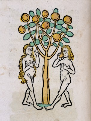 L0029215 Adam and Eve under the Tree of life, woodcut 1547